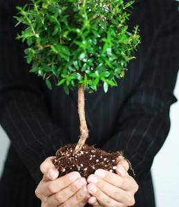 Consultoría e calidad y medioambiente